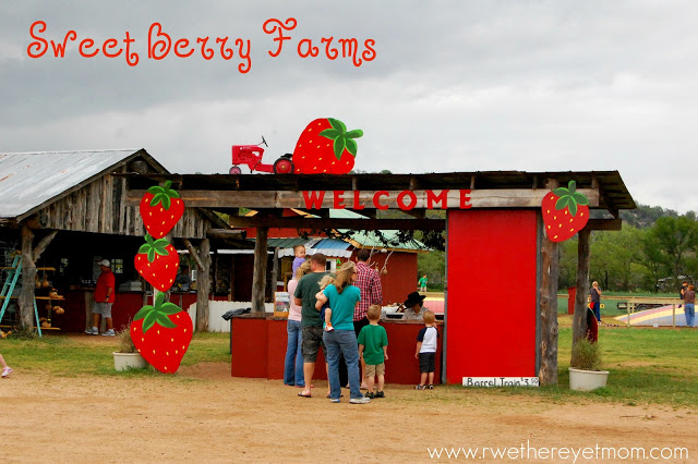 Sweet Berry Farm Marble Falls Texas R We There Yet Mom
