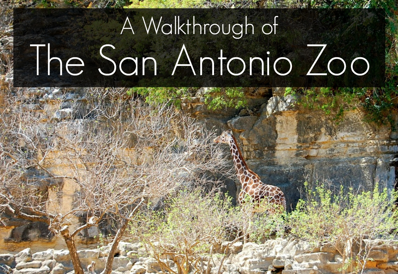 events and things to do in san antonio this weekend html