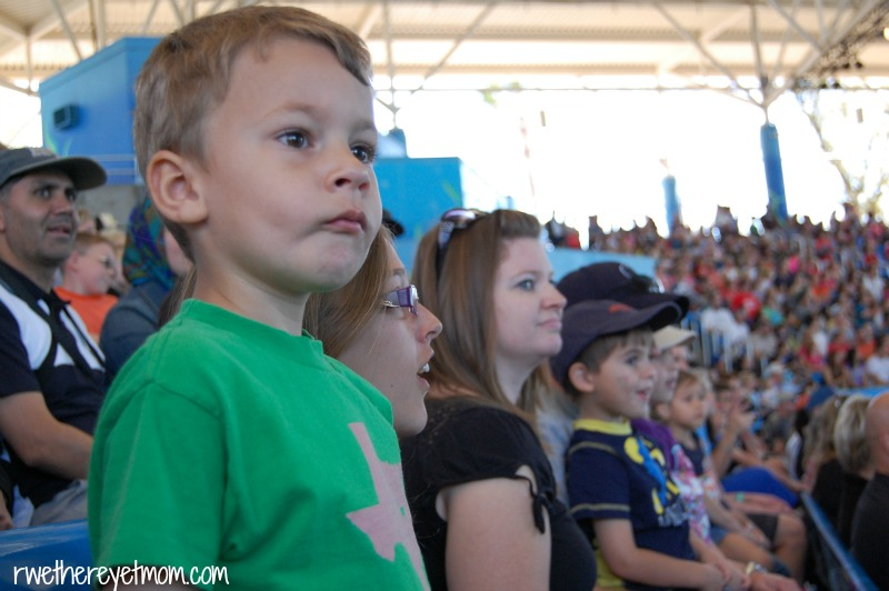 Should I Take My Toddler to SeaWorld San Antonio?