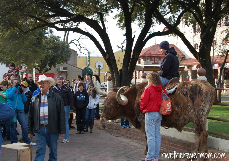 Fort Worth Stockyards Sit on a Steer