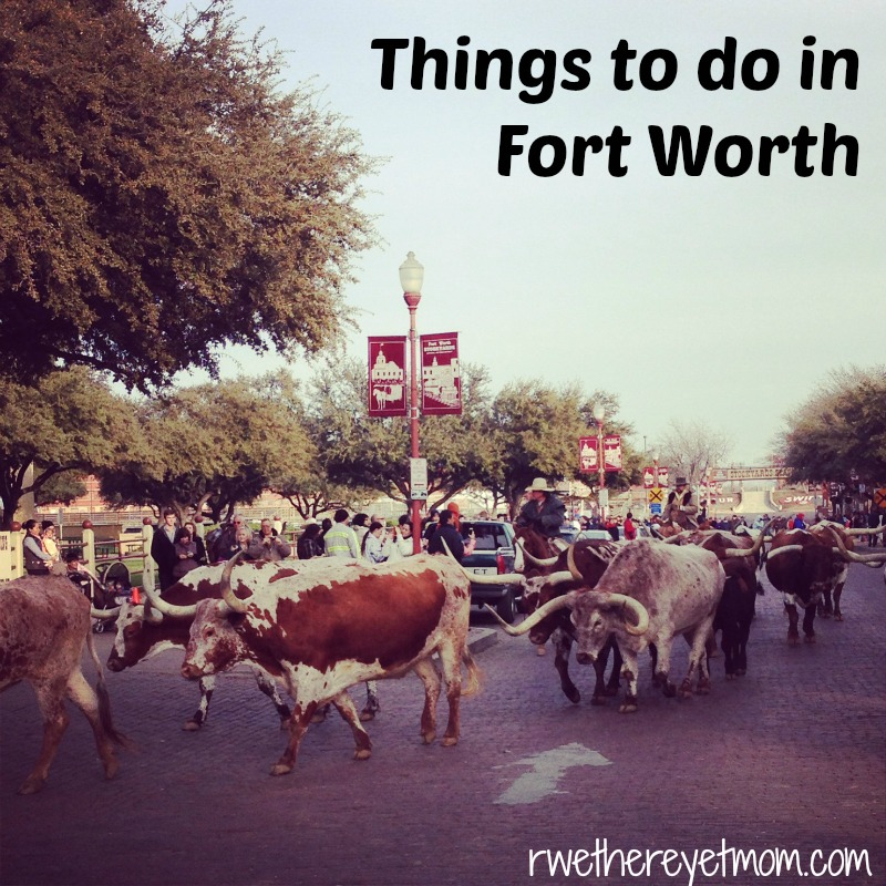 Things To Do In Fort Worth Texas R We There Yet Mom