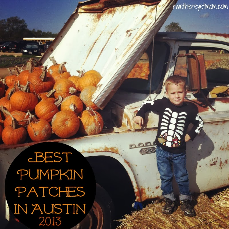 Best austin pumpkin patches 2013 r we there yet mom for Best austin instagrams