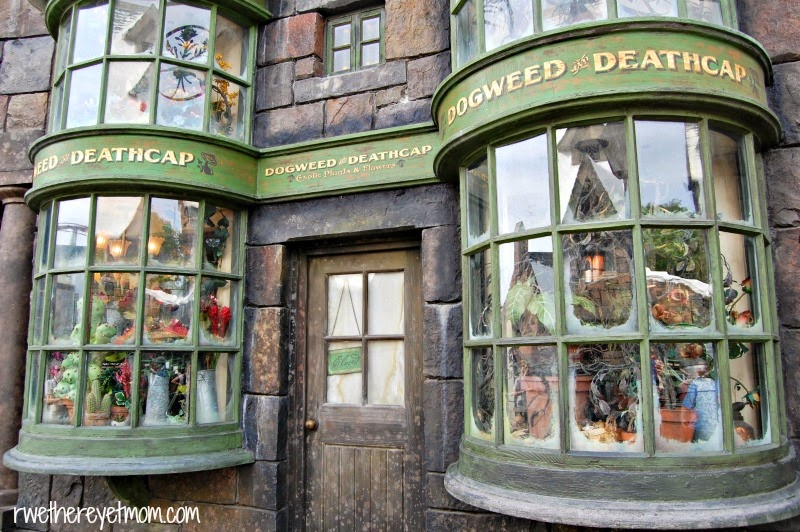 universal orlando harry potter what 39 s to be expected at diagon alley r we there yet mom. Black Bedroom Furniture Sets. Home Design Ideas