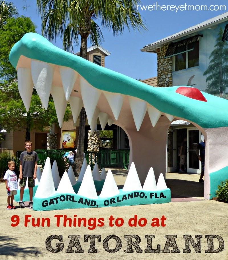 9 Fun Things To Do Gatorland