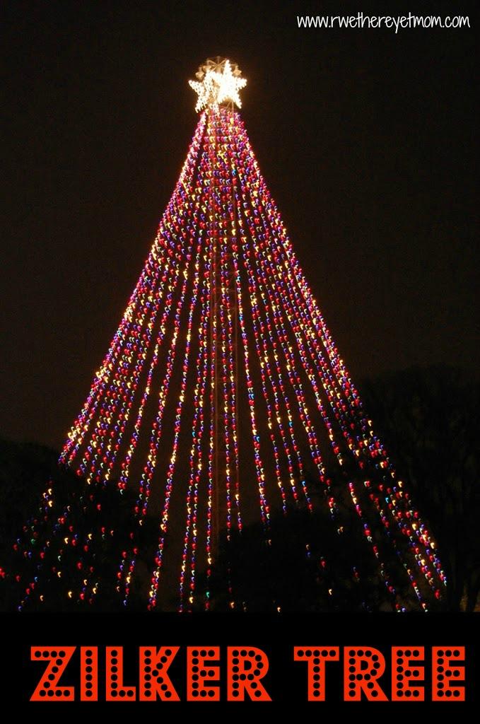 Zilker holiday tree