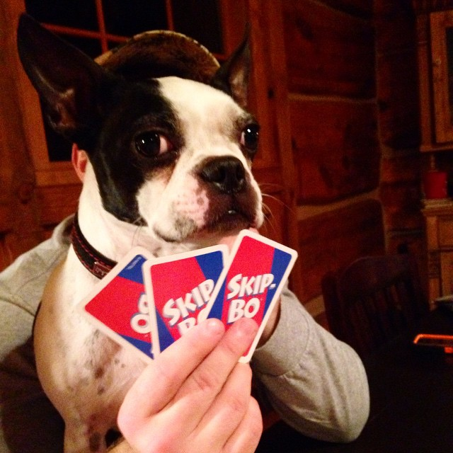 He's a card shark. You gotta watch out for him.