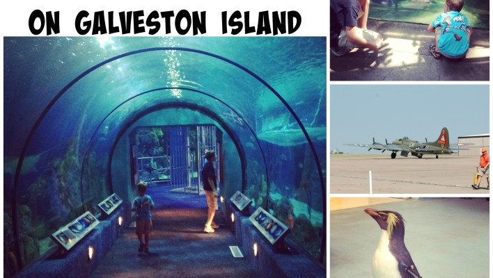 5 Fun Things to Do in Galveston, TX for Spring Break {A Giveaway}