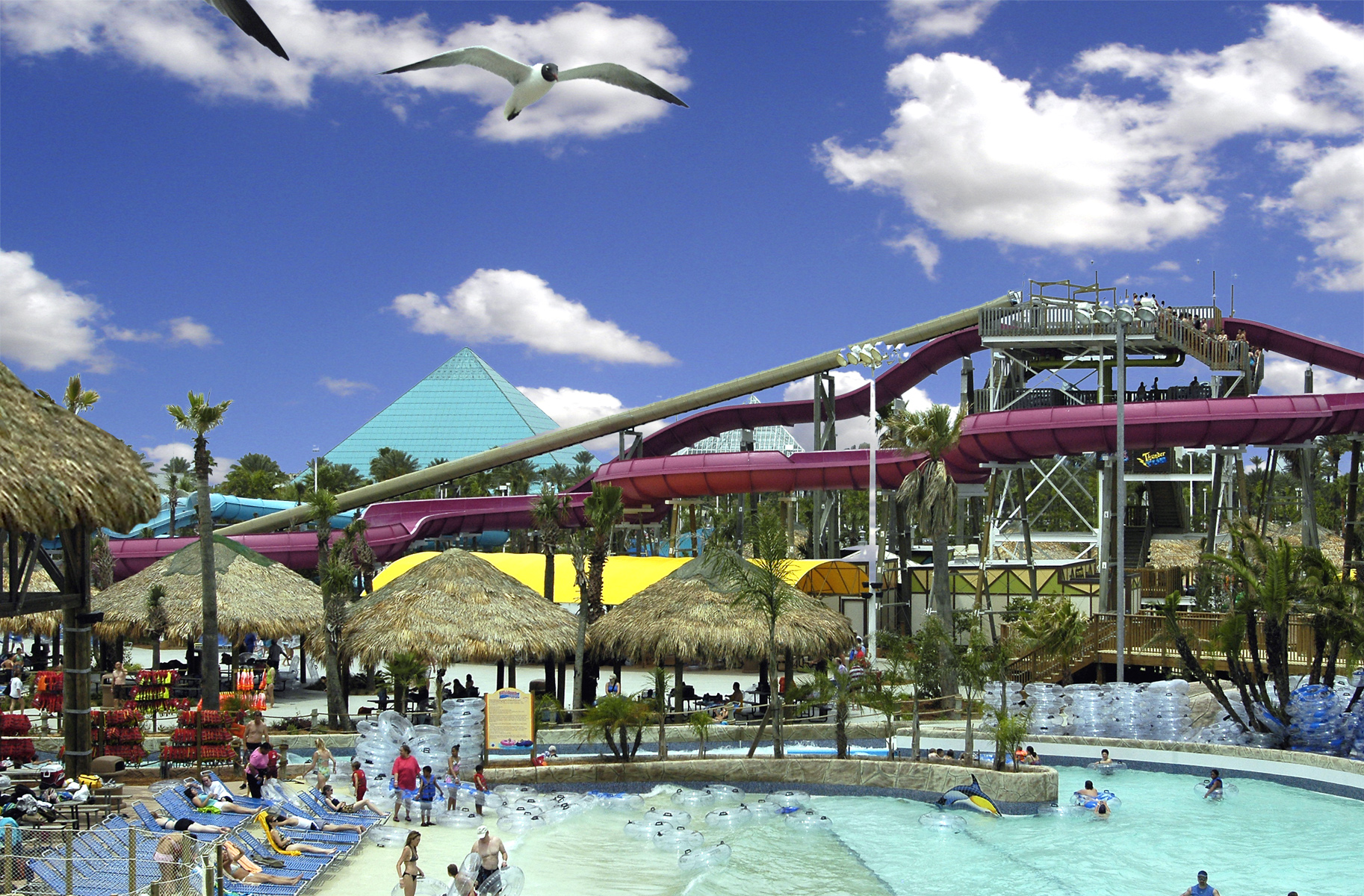 5 Fun Things To Do In Galveston Island Texas Family Fun