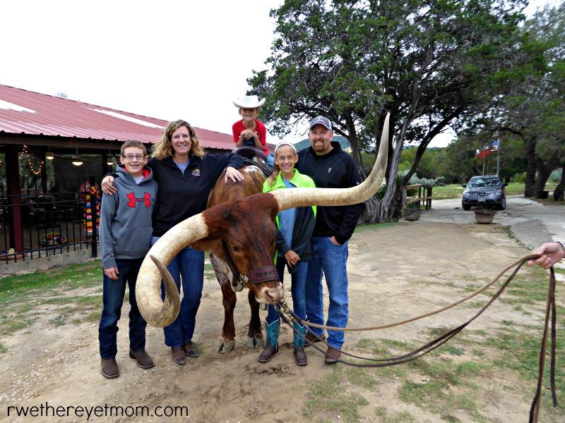 family on steer