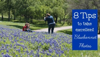 8 Tips for Taking Excellent Bluebonnet Pictures