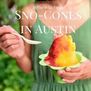 Sno-Conesin Austin