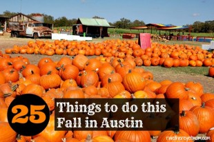 Fall-in-Austin