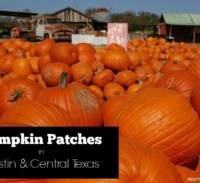 Pumpkin Patches Austin