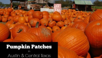 Pumpkin Patches in Austin & Central Texas | 2016