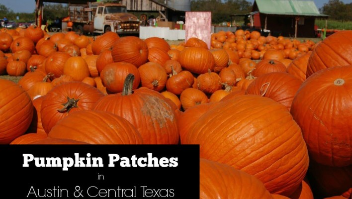 Pumpkin Patches in Austin & Central Texas | 2015