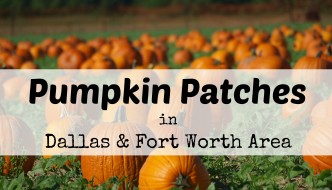 Pumpkin Patches in Dallas & Fort Worth | 2017