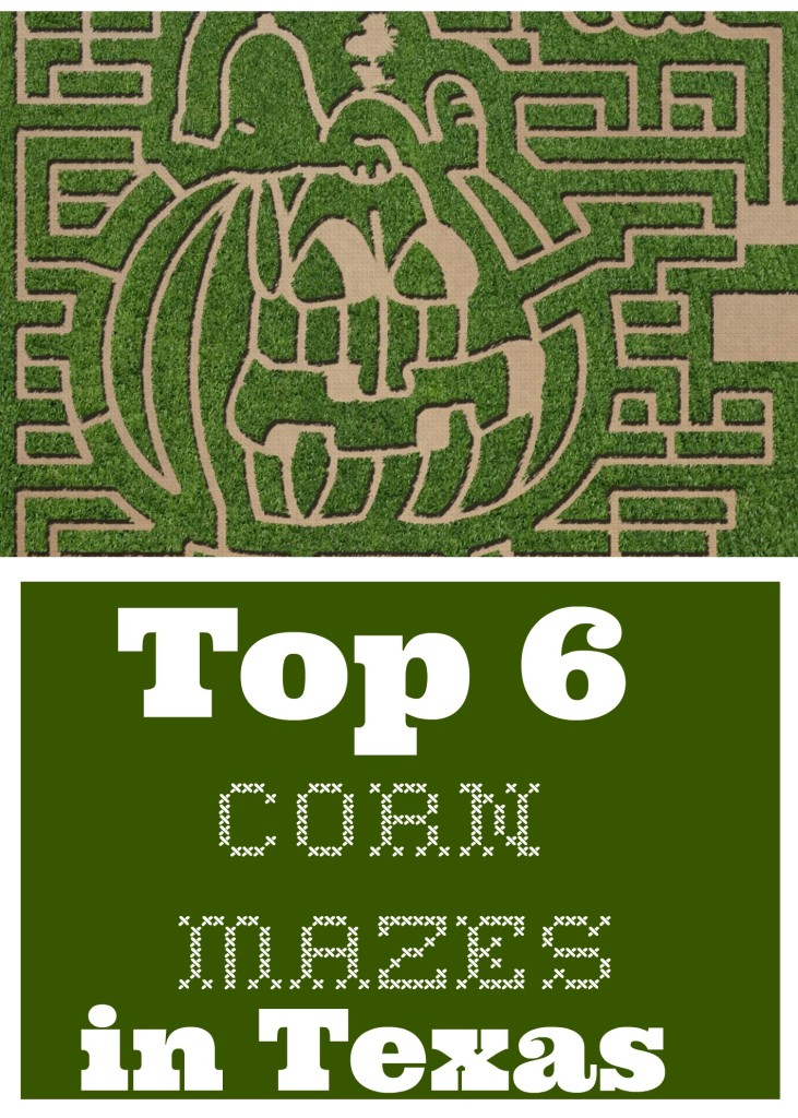 Corn Mazes in Texas