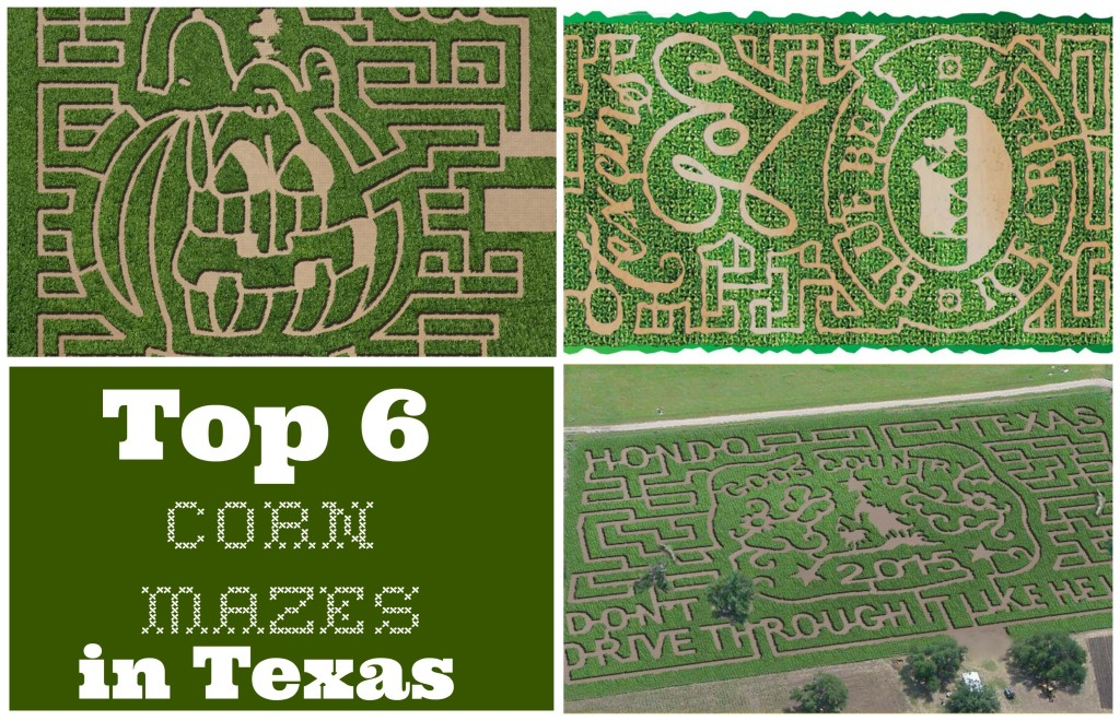 Texas Corn Mazes