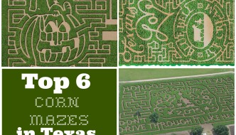 Top 6 Texas Corn Mazes in 2016