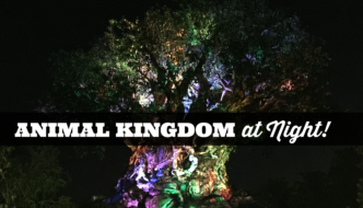 Why You Must Experience Disney's Animal Kingdom at Night