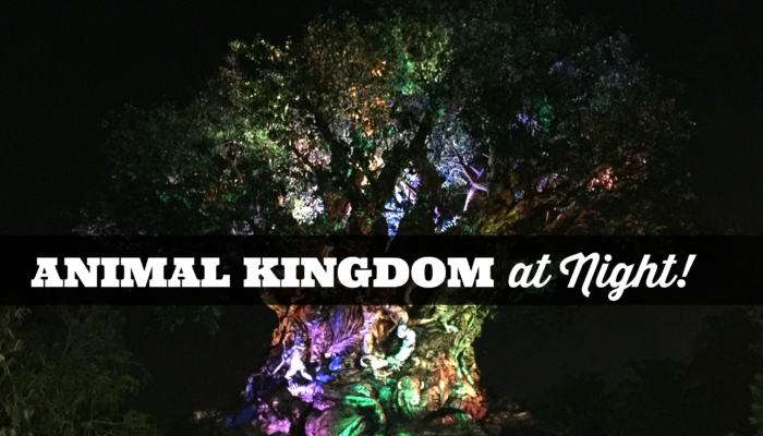 Disney's Animal Kingdom at Night Opening this Summer