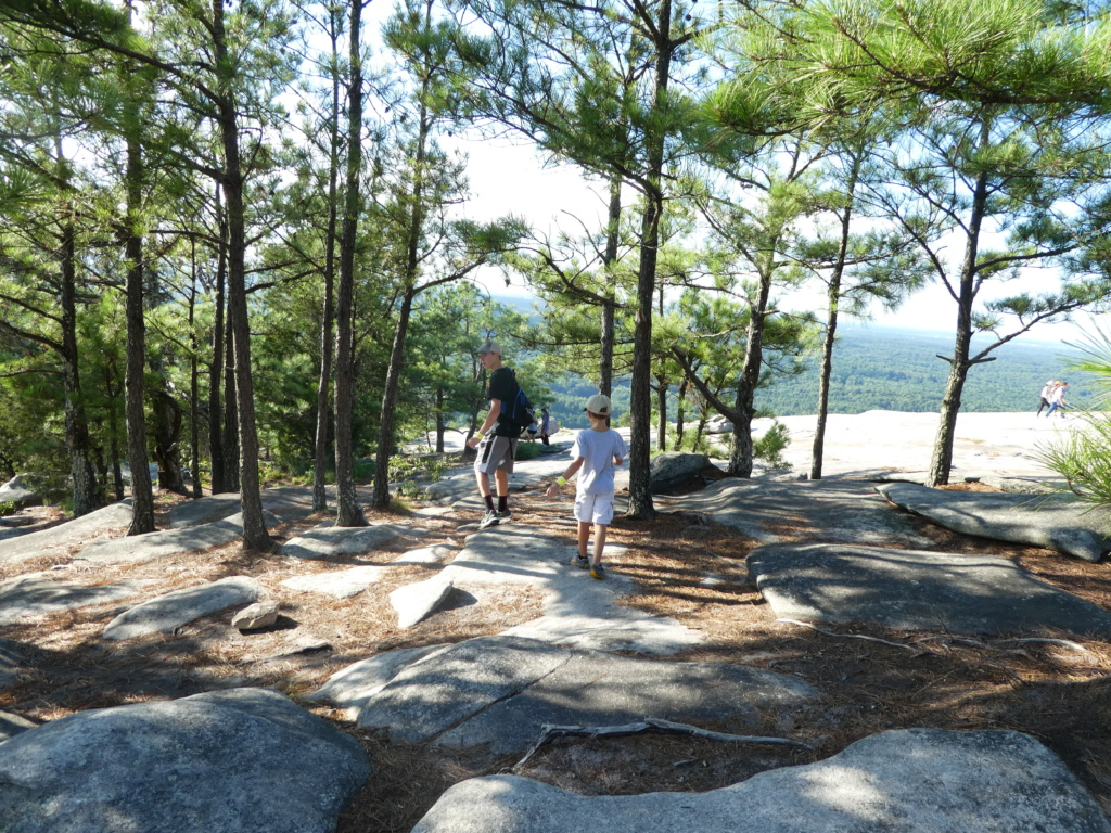 Atlanta with Kids - Stone Mountain Park