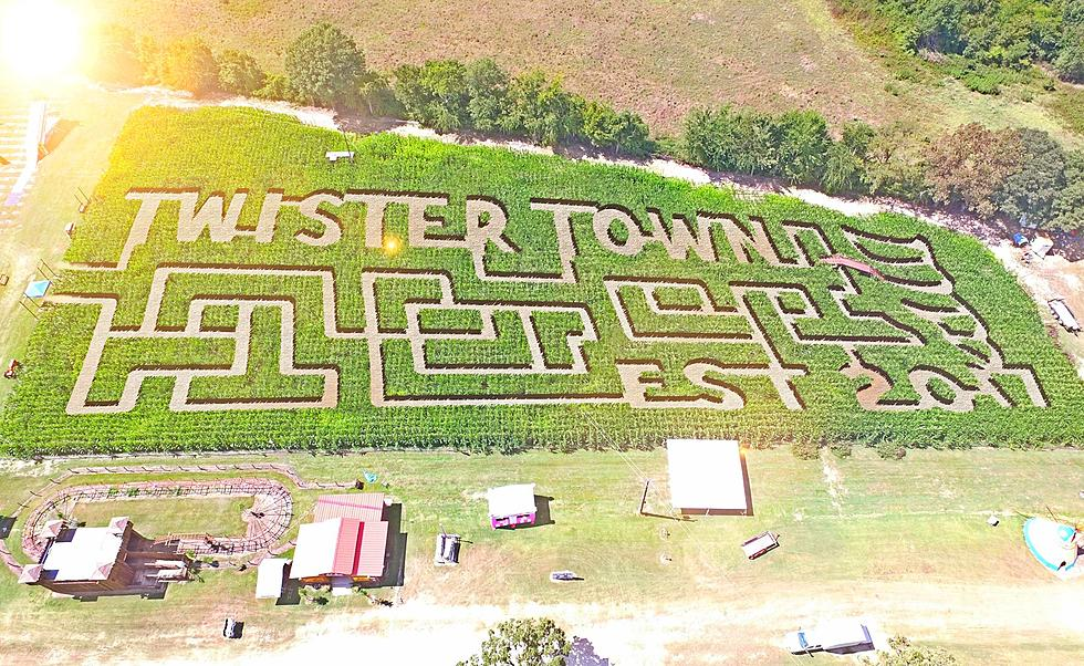 Texas Corn Mazes - YesterLand Farm