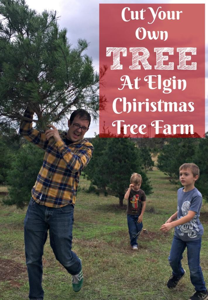 Elgin Christmas Tree Farm