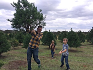 Cut Your Own Christmas Tree at Elgin CHRISTmas Tree Farm