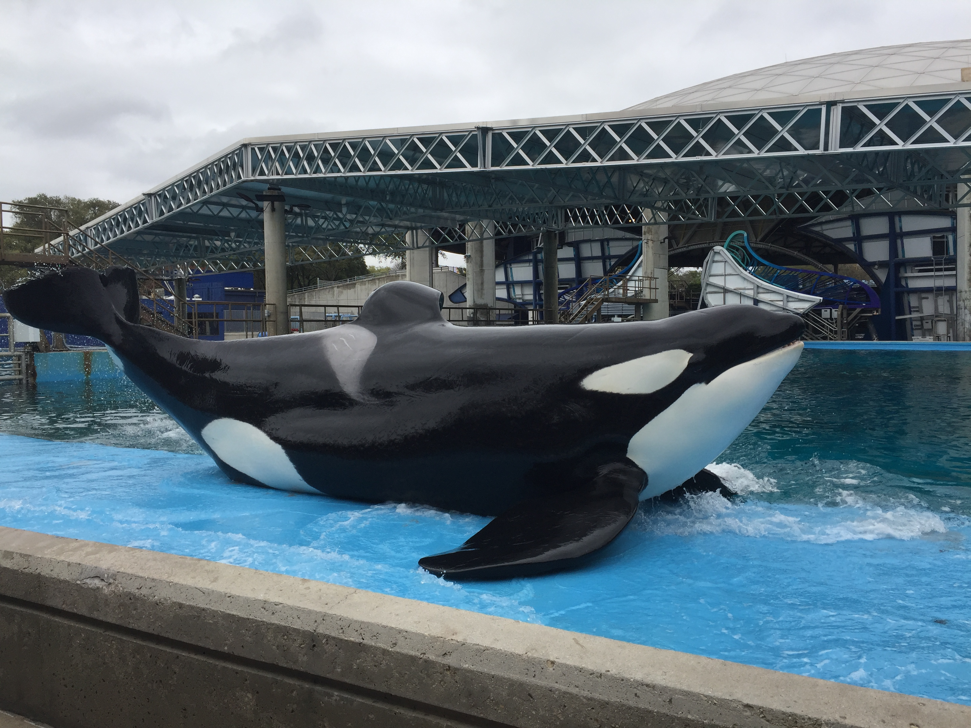New at SeaWorld San Antonio