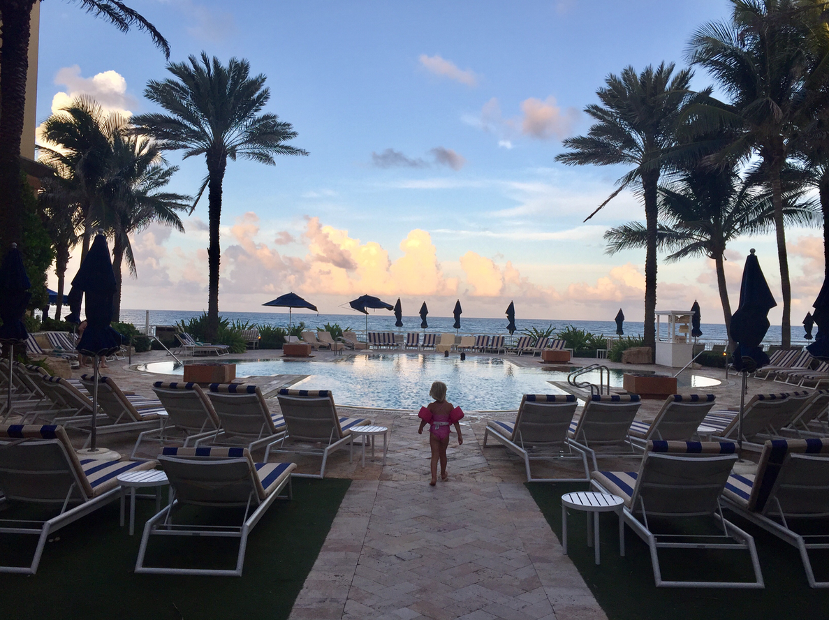 Things to do in The Palm Beaches for families