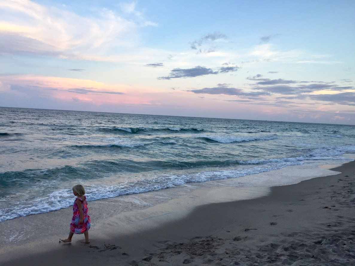 Things to do in The Palm Beaches Florida