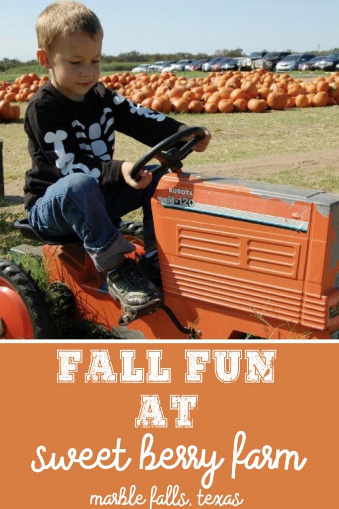 Fall Fun at Sweet Berry Farm in Marble Falls, Texas