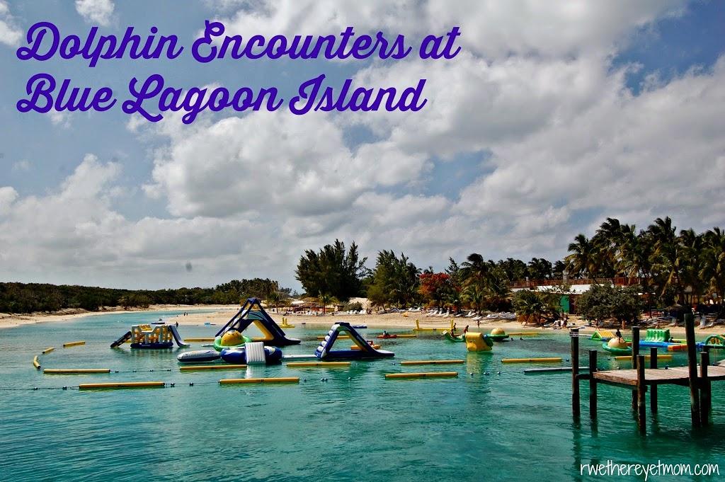 Dolphin Encounters At Blue Lagoon Island Nassau Bahamas