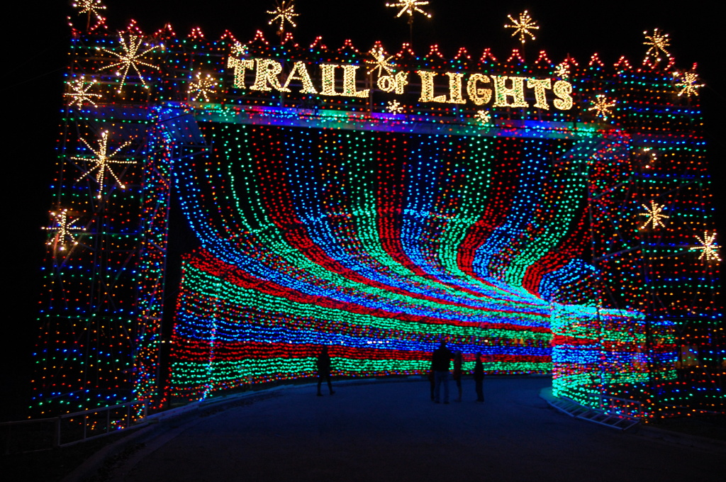 Image result for Take in a Holiday Light Trail in texas