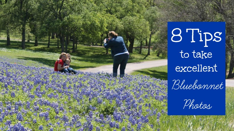 Tips to take Bluebonnet Pictures