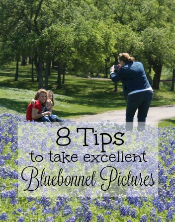 Tips-to-take-bluebonnet-pictures
