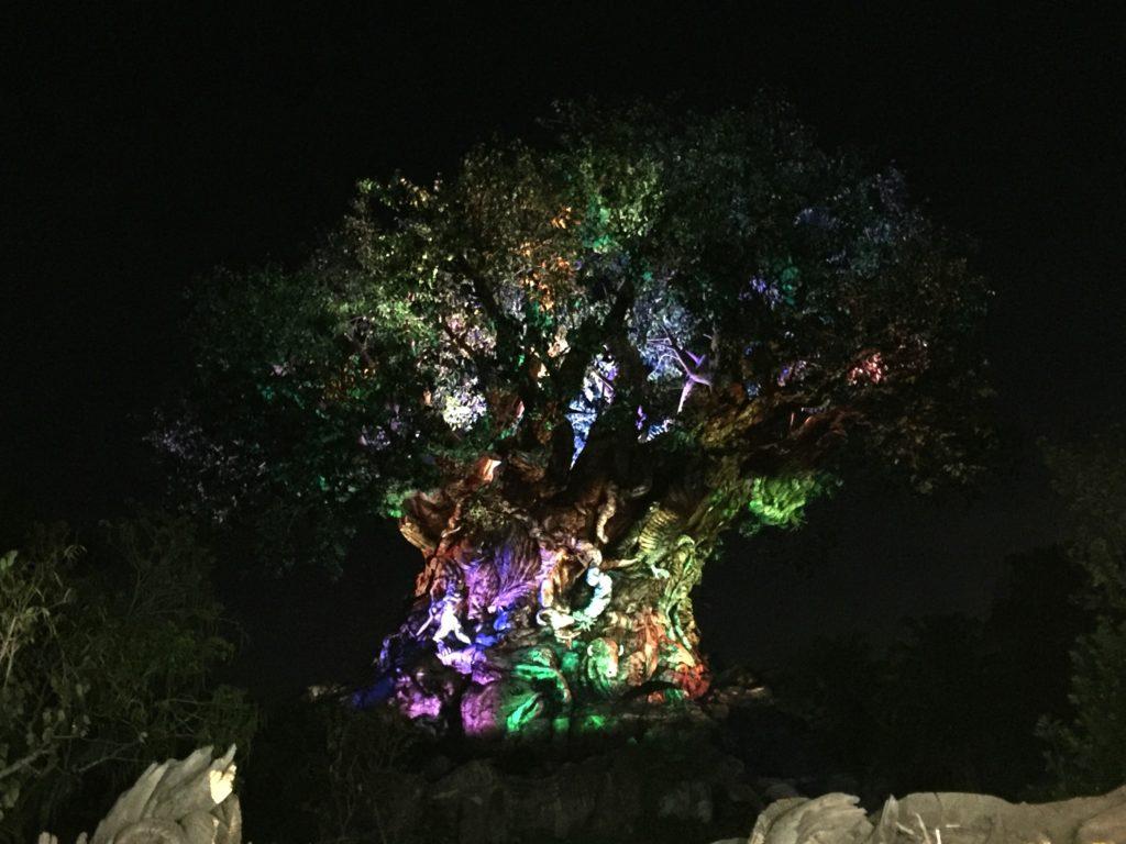 Animal Kingdom at Night Tree of Life