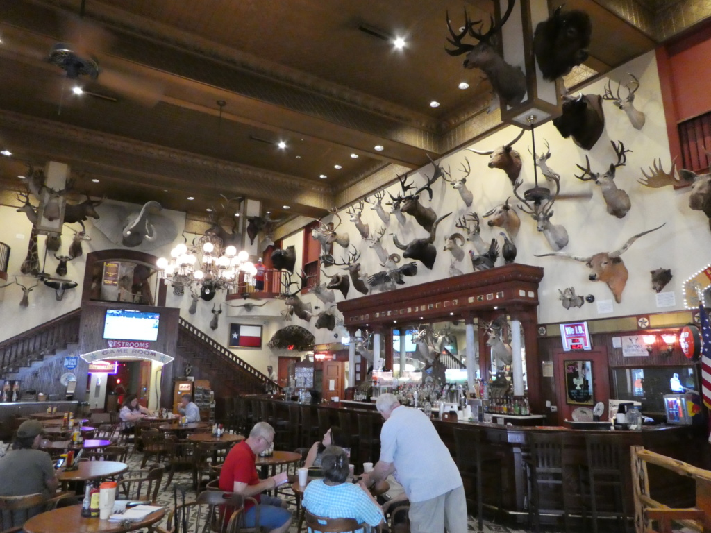San Antonio with Kids- Buckhorn Saloon