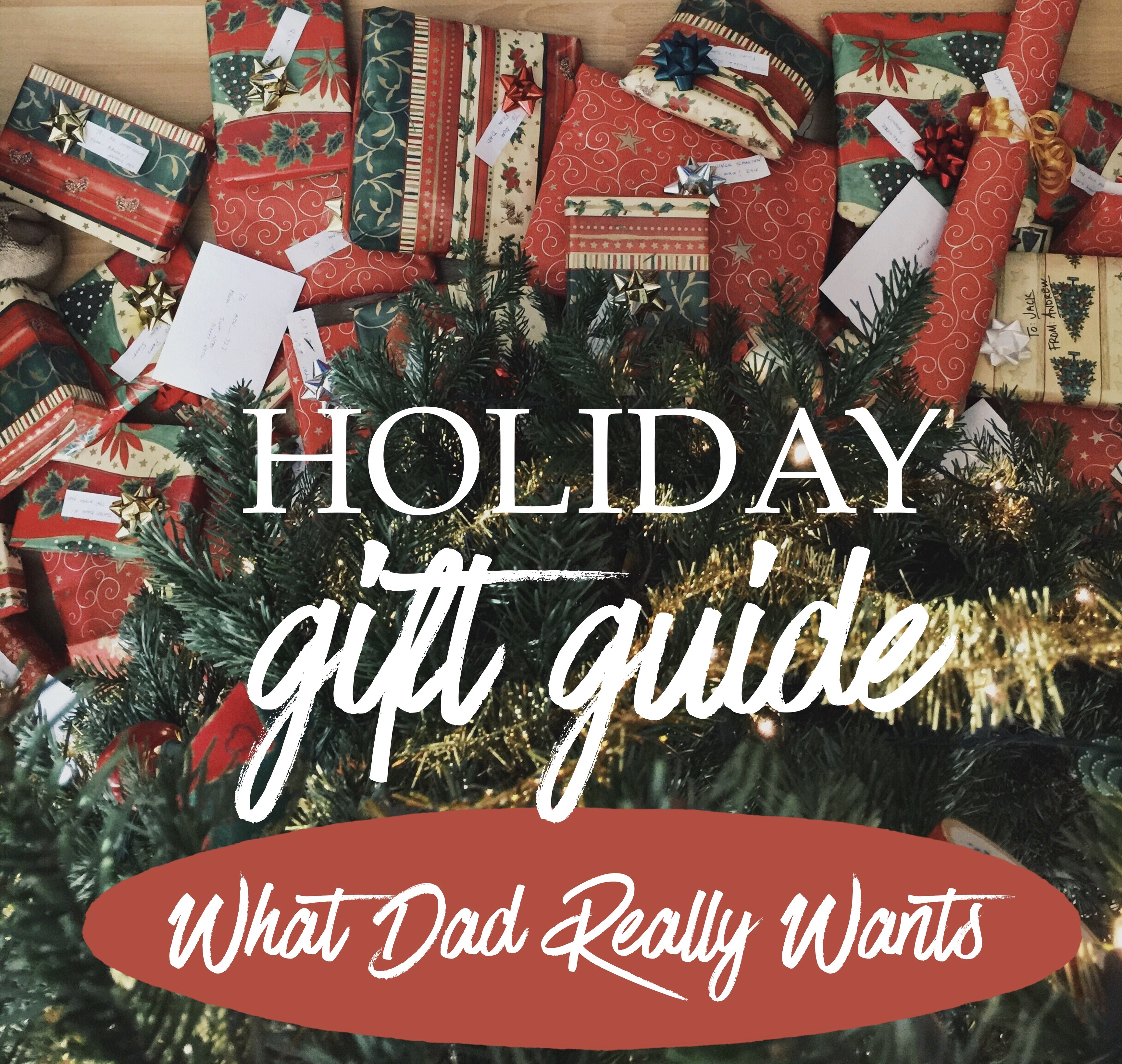 Holiday Gift Guide for Dads - What Dad Really Wants this ...