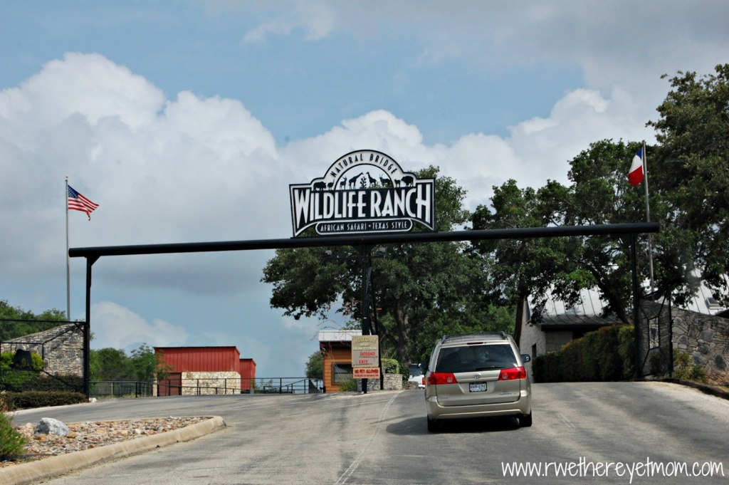 10 Natural Bridge Wildlife Ranch Tips