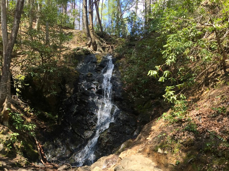 Great Smoky Mountains National Park in Pigeon Forge