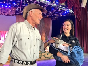 Jack Hanna Wild Days at SeaWorld San Antonio